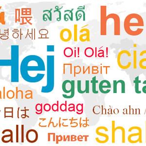 WordPress Dil Dosyası Güncellemesi Kapatma
