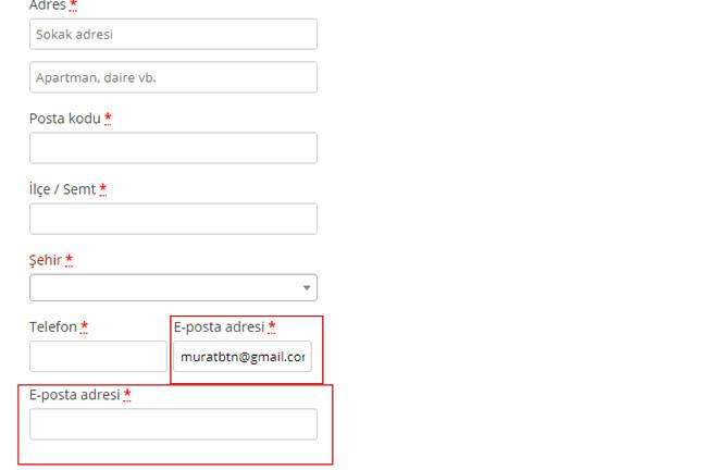 WooCommerce E-Posta Tekrarı Alanı Ekleme